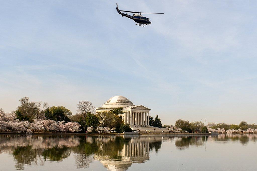 Jefferson, chopper, cherry blossoms
